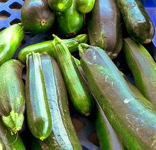 zucchini ü.a