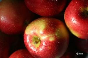 Bild für Apfelallergie: Der Apfel macht den Unterschied