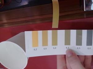 Urin-pH-Messstreifen