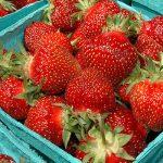 Bild für Erdbeeren nur selten zu hoch belastet