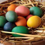 Bild für Gutes Ei, schlechtes Ei?