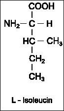 Strukturformel Isoeucin