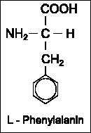 Strukturformel L-Phenylalanin