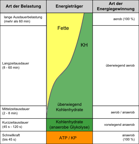 Anteil der Energiebereitstellung